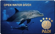 Open Water Diver (OWD)