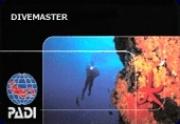 Kurs des Monats: Divemaster
