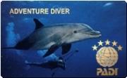 Kurs des Monats: Deep Diver (Tieftauchen)
